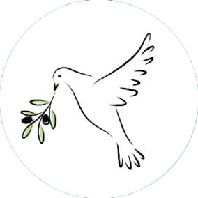 CamelCase Your Rails JSON API With OliveBranch | Viget